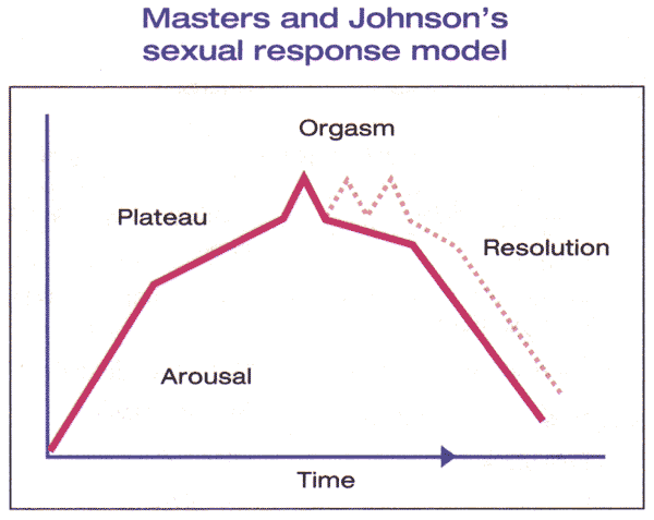 Figure 1. The Masters and Johnson model describes a woman's arousal cycle as consisting of four steps: arousal, plateau, orgasm, and resolution. The model includes the ability of women who have reached the orgasm stage to experience multiple orgasms (dotted line).